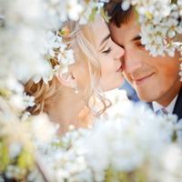 De la nunta de hartie la nunta de diamant