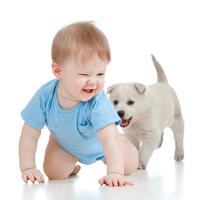 La cresa sau la bunici? Ce alegi si cum iti pregatesti copilul?