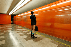 Ziua fara pantaloni la metrou 2016/ No Pants Subway Ride 2016, editia a doua