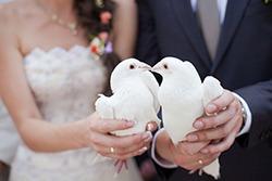 Noaptea nuntii – prima noapte ca sot si sotie