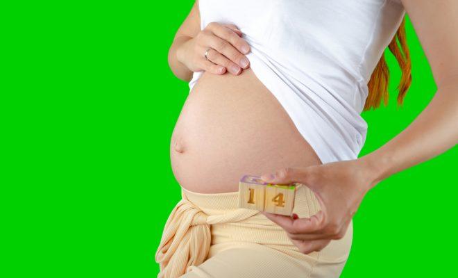 Saptamana 14 de sarcina