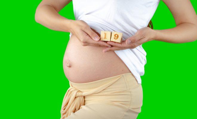 Saptamana 19 de sarcina