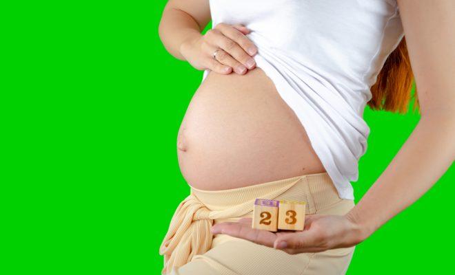 Saptamana 23 de sarcina