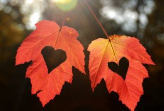 Horoscop dragoste luna octombrie 2020